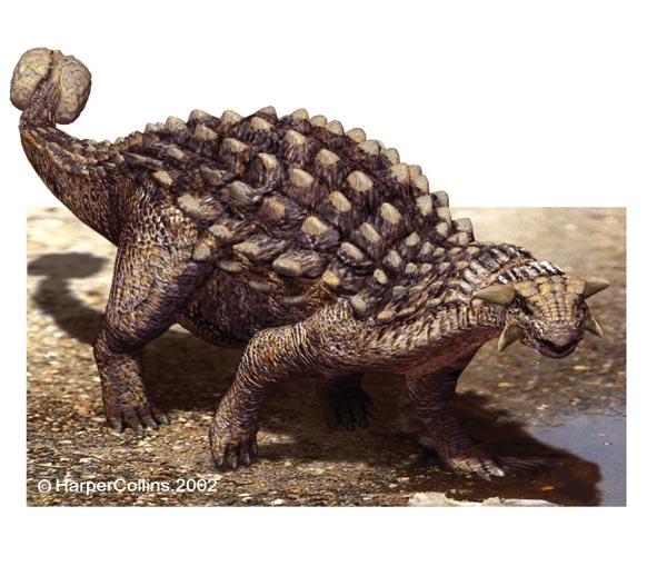 http://thomas.thomlex.com/dinosaurs/ankylosaurus.jpg